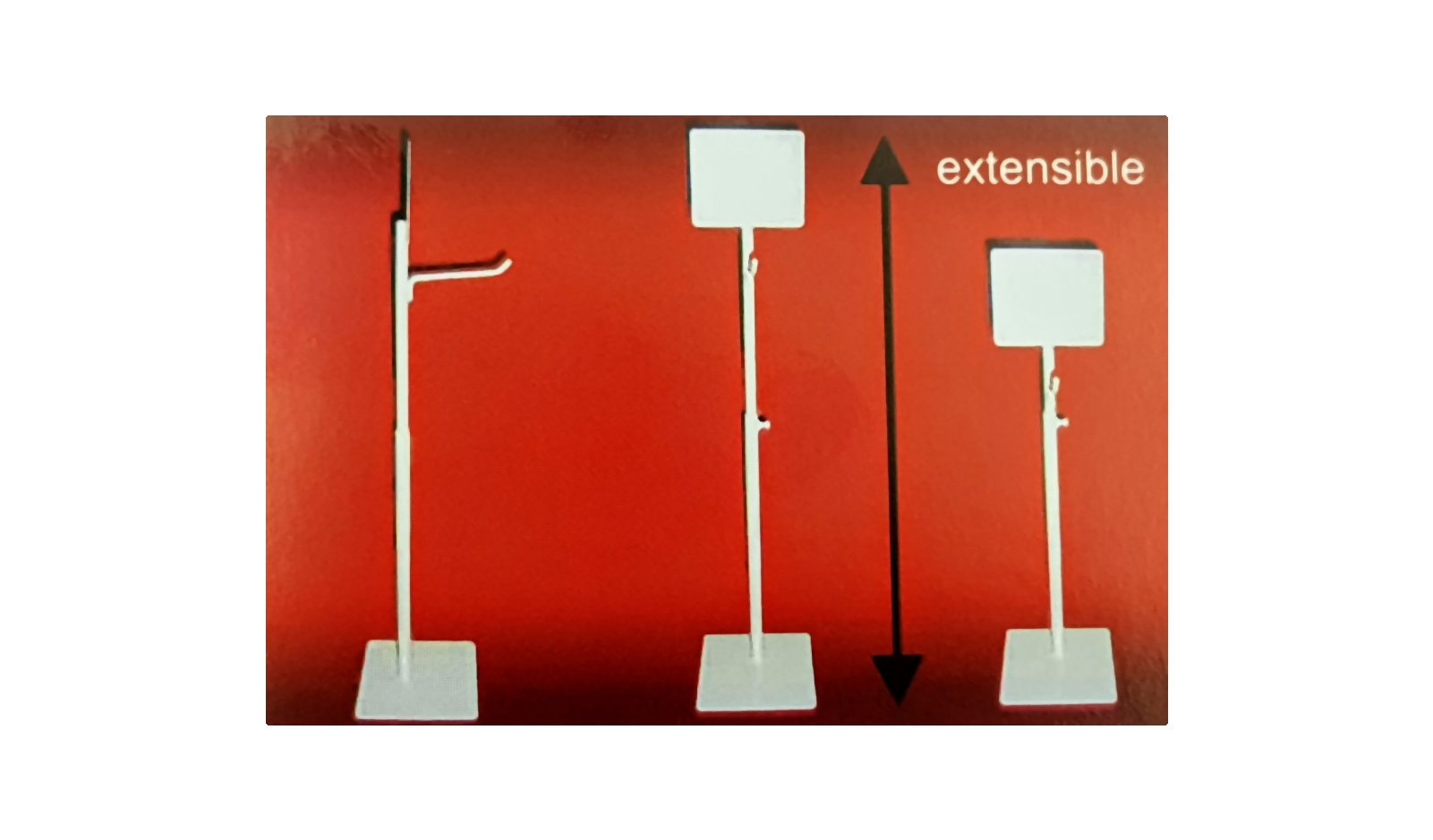 formes_expositores